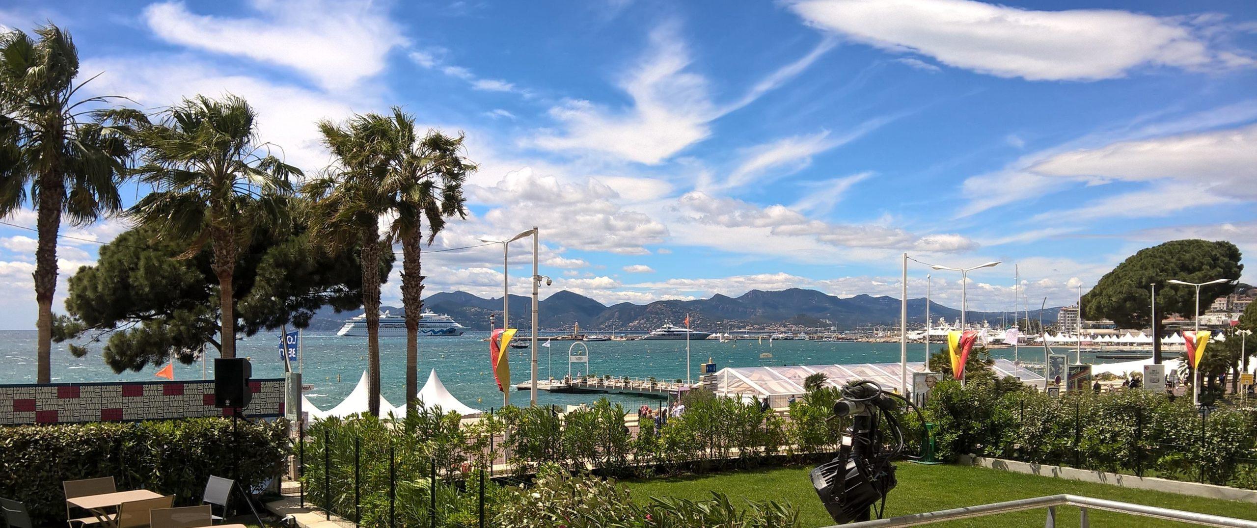 Scandinavian Films at Cannes